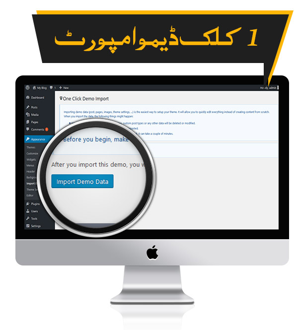 1 Click Demo Importer - Premium Urdu Newspaper Theme