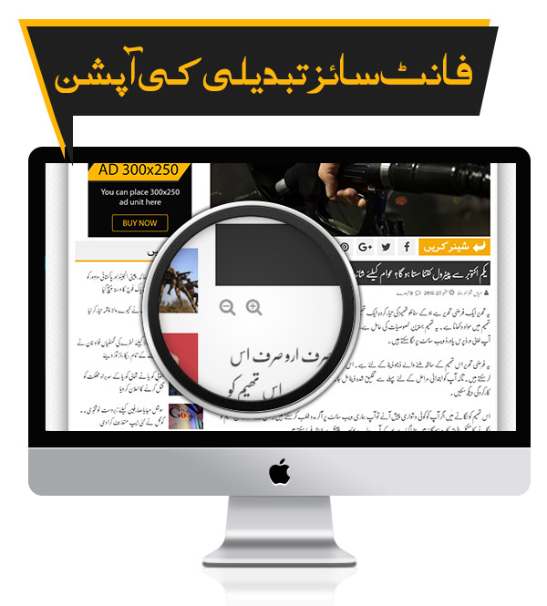 Increase & Decrease Font Size - Premium Urdu Newspaper Theme