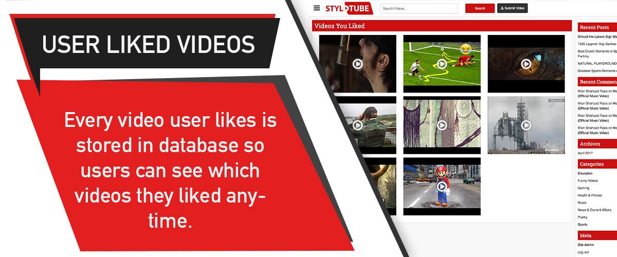 StyloTube - WordPress Video Website Theme